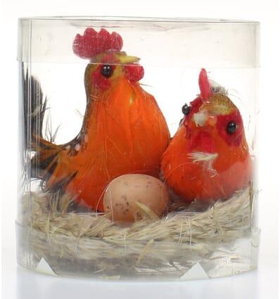 Hen family in a nest